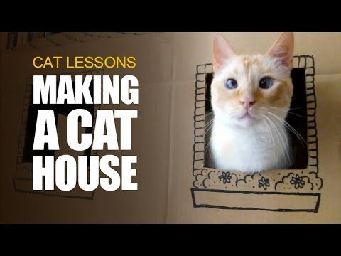 Cats need something to scratch and destroy. A two-storey cardboard house can be the best solution to protect your furniture. More info on how to make it? Her...