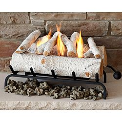 Real Flame Birch Convert-To-Gel Log Set - I know it is cheesy but do in a concrete surround may be fun