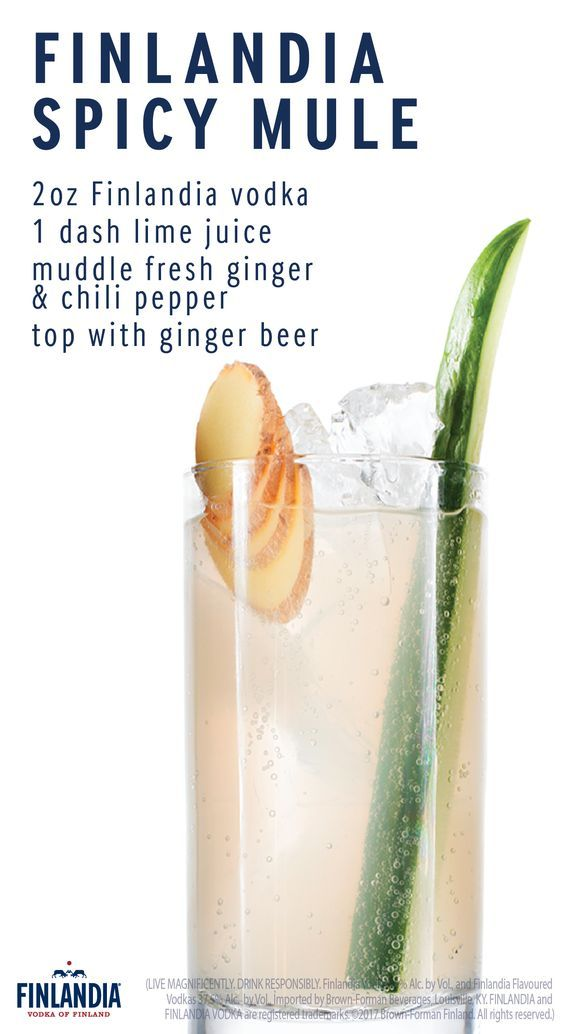 Spice up your life with a glass of the Finlandia Spicy Mule. Filled with flavor, this is the ideal cocktail to have when cheering on your favorite basketball team during March Madness. Click here to see more delicious recipes!