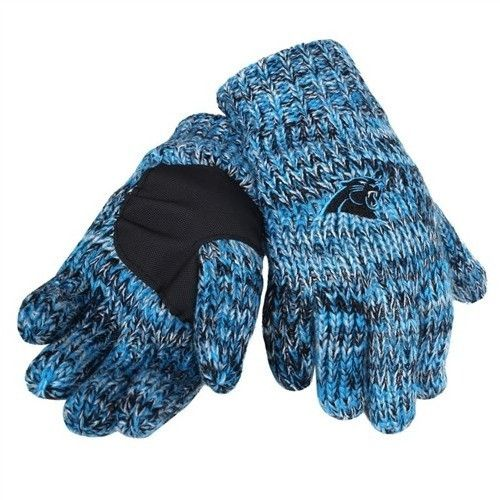 Carolina Panthers Team Logo Winter Peak Gloves