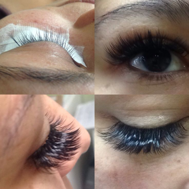 how to become a lash stylist