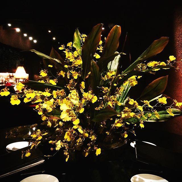 新宿Refrain 今週の生け花 ・オンシジューム ・ドラセナ  オンシジュームは 大きな唇弁をもつ花姿が ドレスを広げて優雅に踊る女性のように見えるので、 英語では「Dancing lady orchid(踊る女性のラン)」 とも呼ばれています。  花言葉「可憐」「一緒に踊って」 花言葉の「一緒に踊って」は英名の「Dancing lady orchid(踊る女性のラン)」にちなみます。 「可憐」の花言葉は、かわいいチョウのような小花をたくさんつけることに由来するといわれます。 Follow us on!! →@spainbarrefrain #新宿Refrain#スペインバル#バル #お洒落#隠れ家#パーティー #スペイン料理#新宿#ディナー #ワイン#カクテル#酒 #女子会#飲み会#ビール #パエリア#ラムチョップ #デート#肉#記念日 #party#bar#dinner #wine#cocktail#happy #paella#love #date#anniversary
