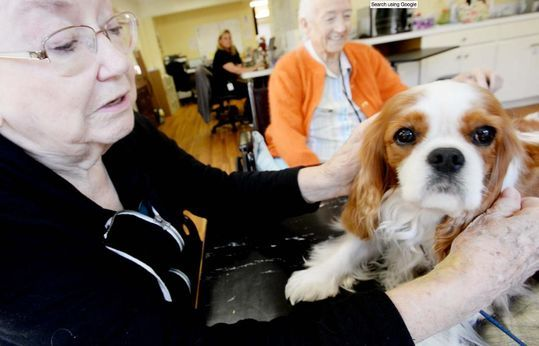 Furry friends offer extra love to retirement residents