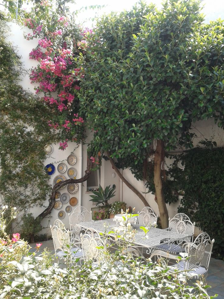 B&B La Casa del Sole in the beautiful region of Salento www.bblacasadelsole.it
