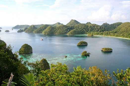 Wayag island, Raja Ampat, Papua. Raja Ampat Islands have the highest recorded diversity of fish and coral on earth. www.sunnyindonesia.com.