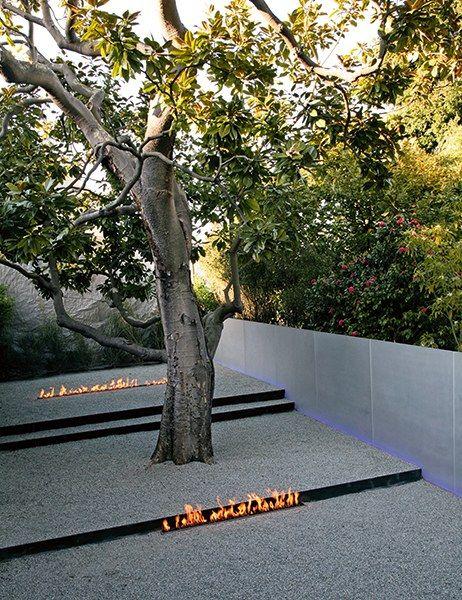 Best 25 minimalist garden ideas on pinterest garden for Most beautiful garden trees