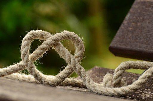 imagem pixabay    O amor e a vida, você e eu,   a minha vida se envolve na tua,   tua vida se entr...