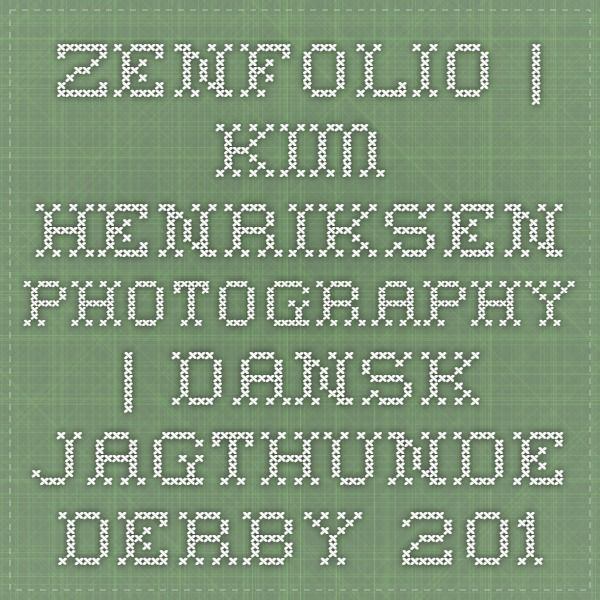 Zenfolio | Kim Henriksen Photography | Dansk Jagthunde Derby 2013 English setter Bjerndrups Messi