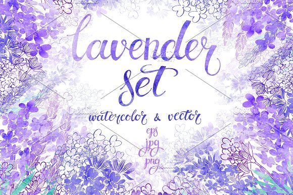 Lavender. by maritime_m on @creativemarket