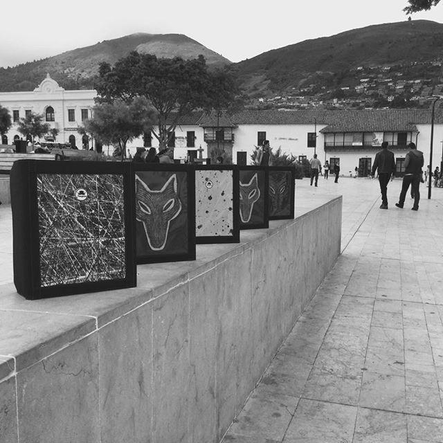 Cinco carpetas Galería Abstracta / Lobo Amarillo Trespies  #trespies #galeriaabstracta #folder #wolf #blackandwhite #park  #loboamarillo #wolf #art #painting #parquedepamplona #mountains #hechoencolombia #hechoenpamplonacolombia