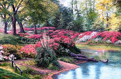Schaefer Miles Paradise Gardens II