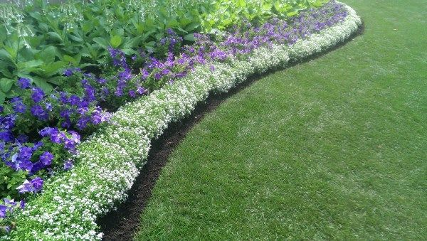 17 best images about garden edging ideas on pinterest for Easy to maintain garden borders