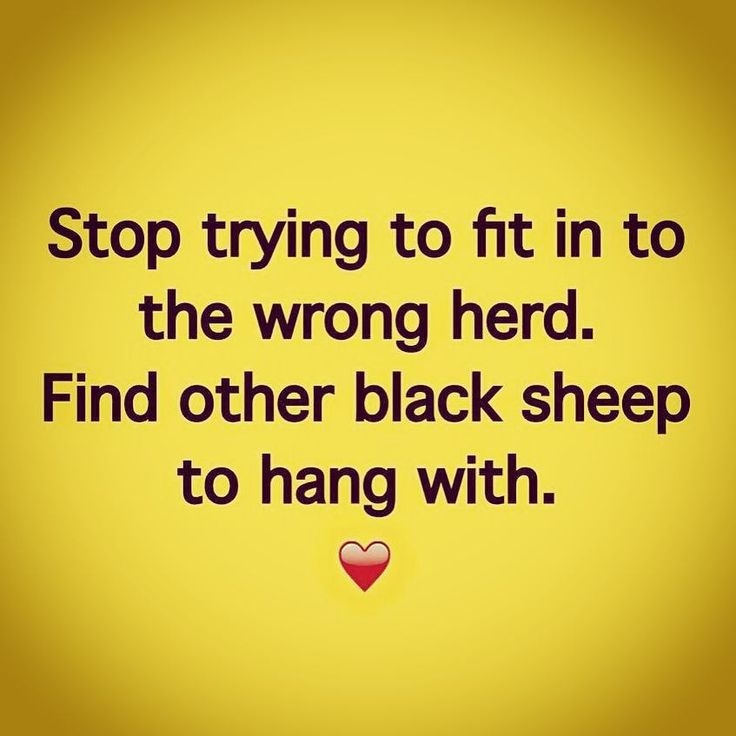 Find other black sheep to hang with