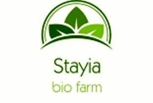 Stayiafarm