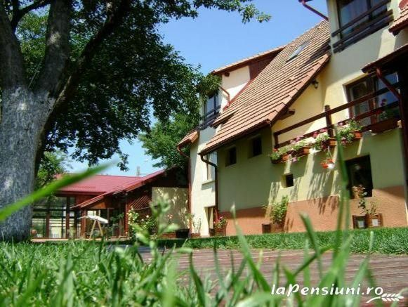 Cazare Pensiunea Nasul si Prietenii la Cristian (Brasov) - Transilvania - Depresiunea Brasovului, Rasnov