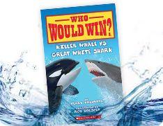 Sharks, Killer whales and Teaching on Pinterest