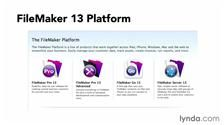 Watch the Online Video Course FileMaker Pro 13 Essential Training
