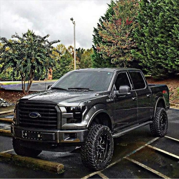 New blacked out ford