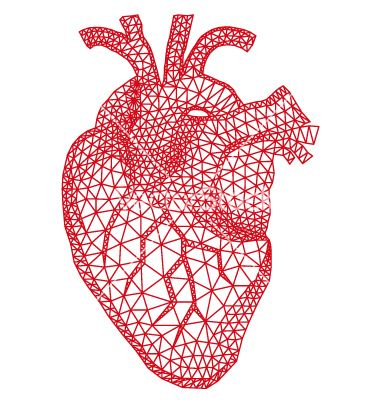 Human heart with geometric pattern vector 1677215 - by amourfou on VectorStock�