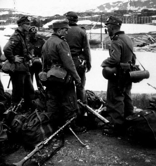 Narvik 1940 - Gebirgstruppen parachute, pin by Paolo Marzioli