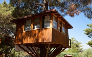 How To Build A Treehouse For Kids at Ideal Home & Garden