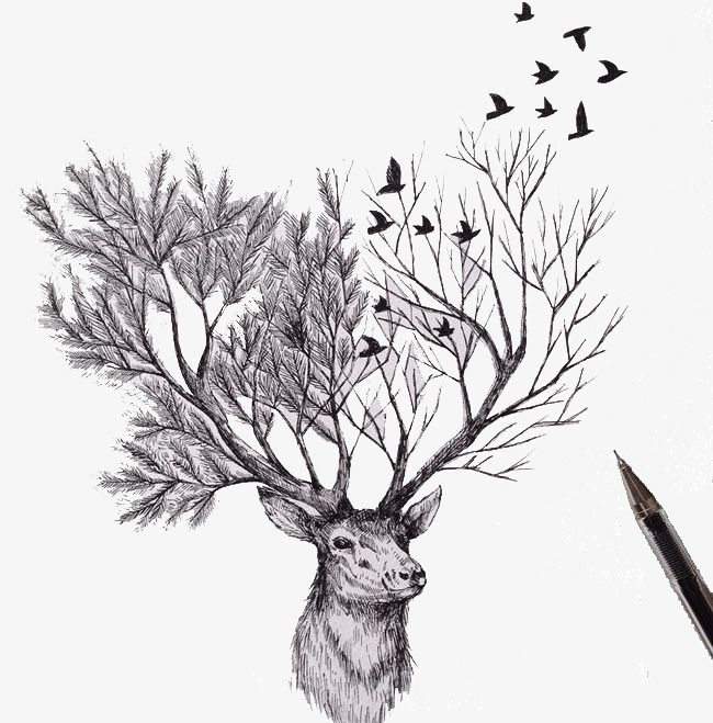 Creative Pencil Sketch Innovation Tree Drawings Pencil Cool Art