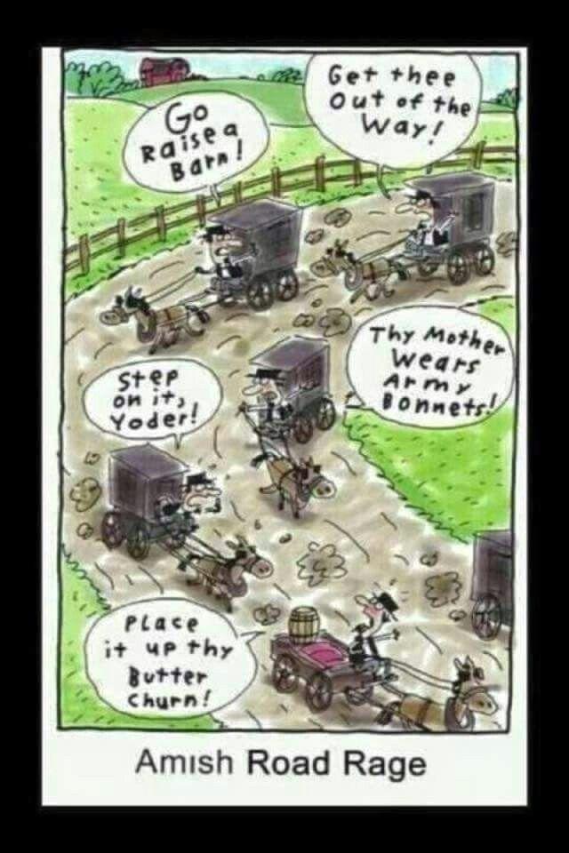 Amish Road Rage
