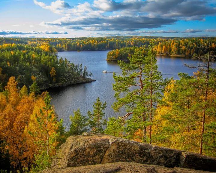 Autumn Colours in Repovesi Park, Finland