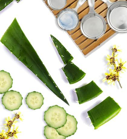 Aloe vera is most commonly used as a topical ointment for burns, sun damage and skin abrasions, but this ancient plant may offer deeper healing abilities when taken orally.