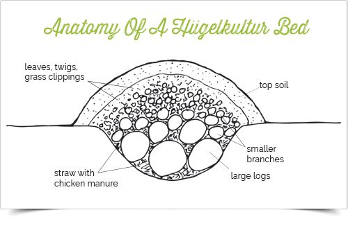 Take a minute to learn about a Hugelkultur--a German tradition of creating a raised plant bed using decaying wood and compostable materials. An amazing process with benefits that are endless...> emfl.us/BcNd