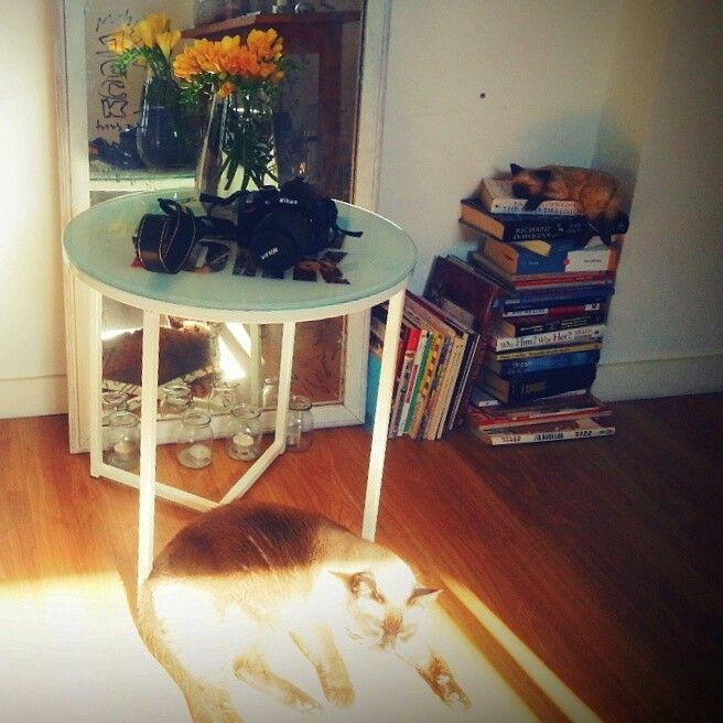 My new NYC glass table #deco #nyc