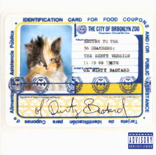 ODB cat