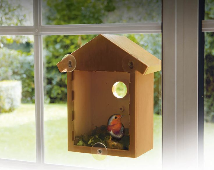 Window Nesting Box Now £10 Watch birds in their natural setting, feeding and nesting, from any room in your house this summer. It is a great way to learn about the home of another creature from the comfort of your own home. Your favourite new neighbours 🐥🐥🐥🐥 KLife Kleeneze