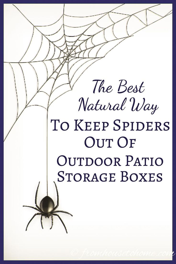 This natural way to keep spiders out of outdoor patio storage boxes is the BEST! It doesn't use pesticides or other harmful chemicals. Plus, it's so easy, I'm going to try it in my shed, too. Definitely pinning!