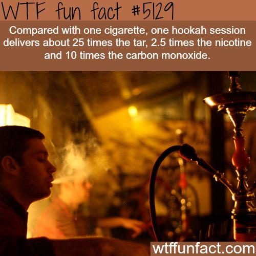 Cigarette smoking vs hookah - WOW! Jus WOW! ~WTF? facts