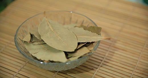 Bruciare foglie di alloro per alleviare stress e ansia