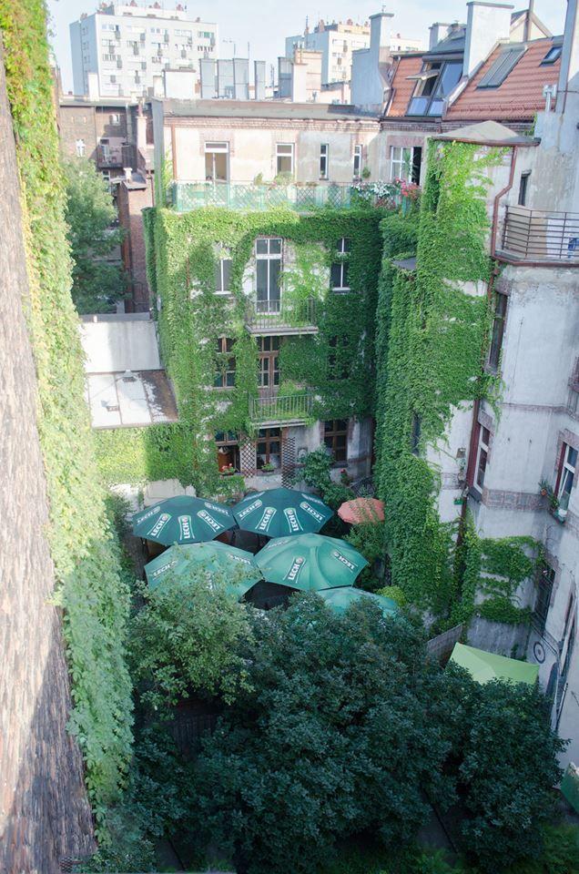 Zielone podwórko kamienicy Pod Czaplą