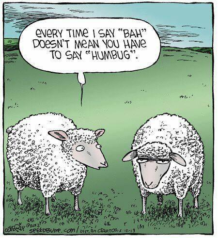 Haha! #Christmas #humor