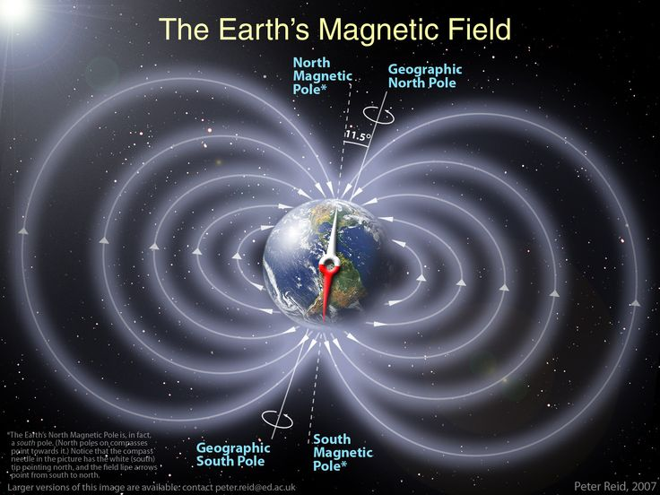 Magnet Therapy: Earth's Magnetic Fields and How It Protects Life