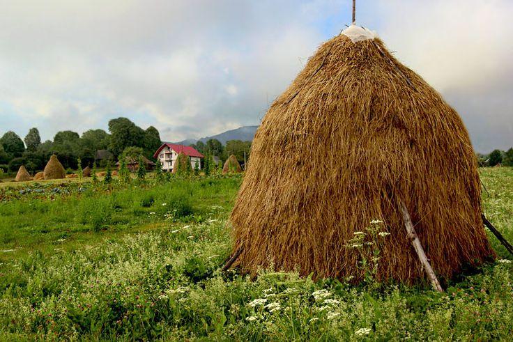 PHOTO: Haystacks in Breb Romania