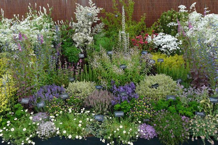 Herb garden design Archives - Gardens. Gardens - designs for gardens