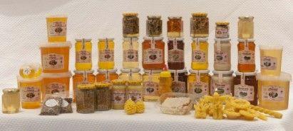 Afacere pentru incepatori din apicultura
