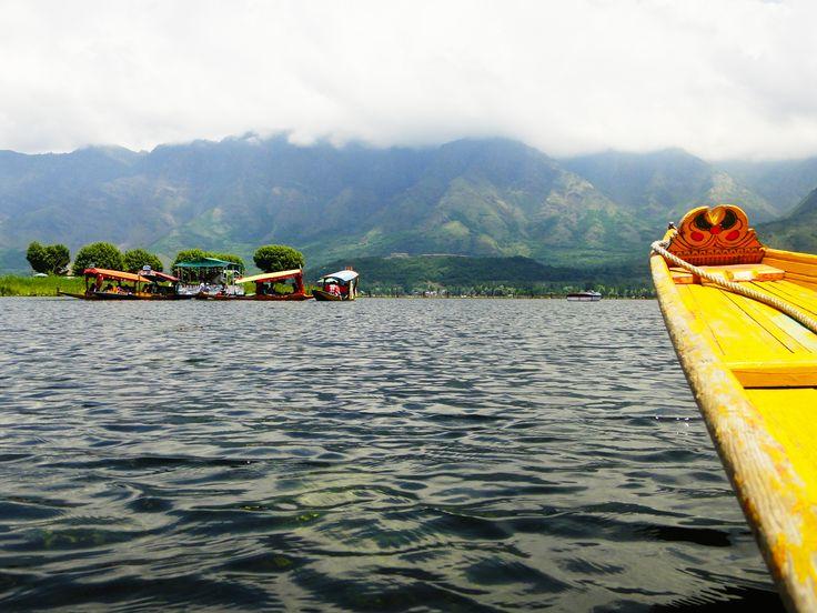 Shikara Ride at Dal Lake