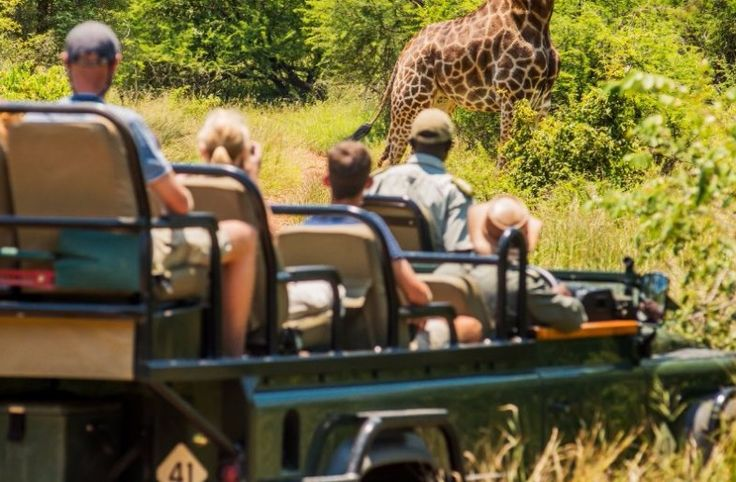 Request an instant quote for a pleasant surprise. This affordable tour includes multiple luxuries.  Enjoy the best of safari, the magnificent Garden Route and iconic Cape Town. Book online, Skype or call us for more details >>