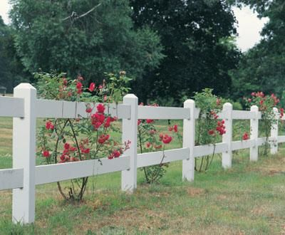 Morgan Two rail Cedar Fence - A standard two rail, 3' high Morgan fence is a superb support for favorite plants and bushes. This standard Morgan made from Cedar has been stained white.