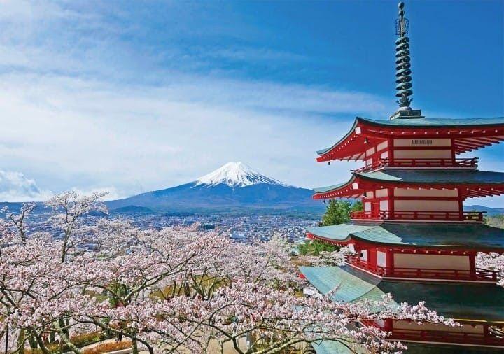 Paling Keren 14 Gambar Bunga Dan Pemandangan Yang Indah Pemandangan Indah Gunung Fuji Dan Bunga Sakura Yang Hanya Peringkat P Di 2020 Pemandangan Gambar Gunung Fuji