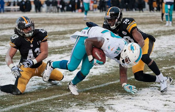 Miami Dolphins tight end Charles Clay (42) slips the