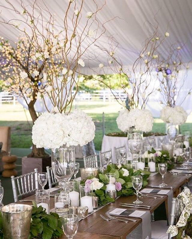 Adding the silver chiavari chairs tall hydrangea centerpieces and garland table runner took the