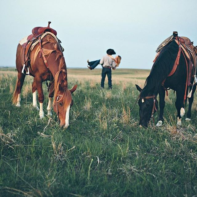 With my horses
