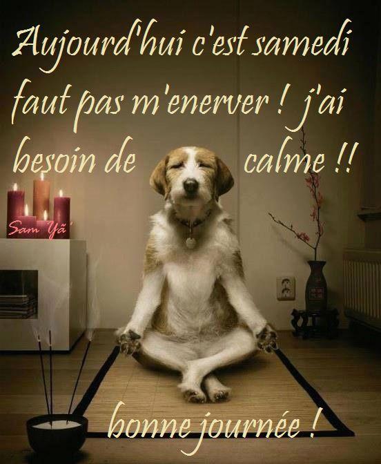 Aujourd'hui c'est samedi faut pas m'enerver! J'ai besoin de calme! Bonne journée!